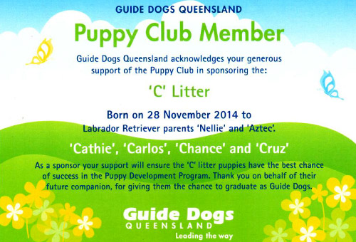LASERSIGHT sponsors Guide Dogs Queensland